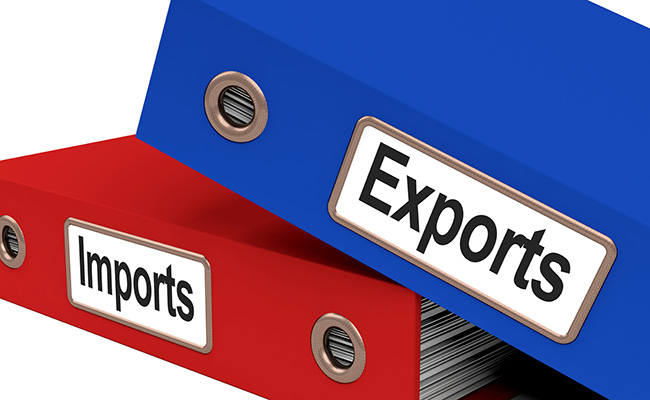 How To Get Import Export Code In Delhi?